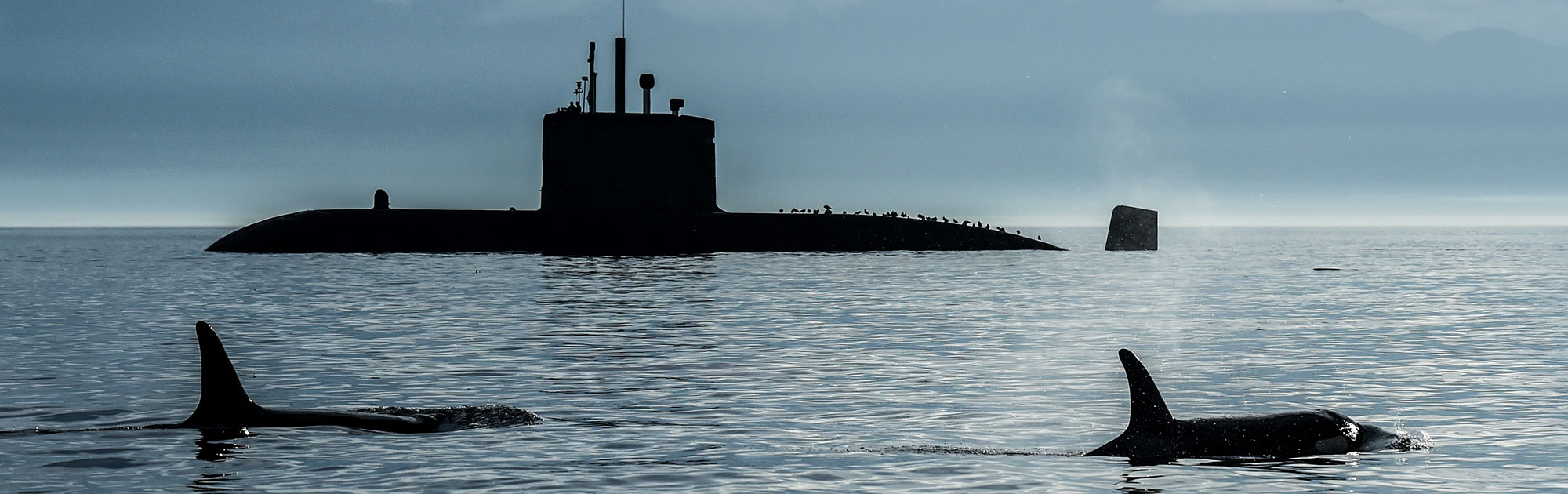 E3DT Submarine